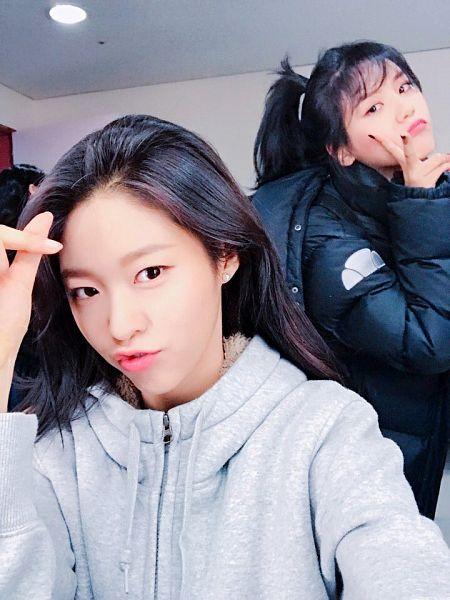 Tags: K-Pop, AOA (Ace Of Angels), Shin Hyejeong, Kim Seolhyun, Selca