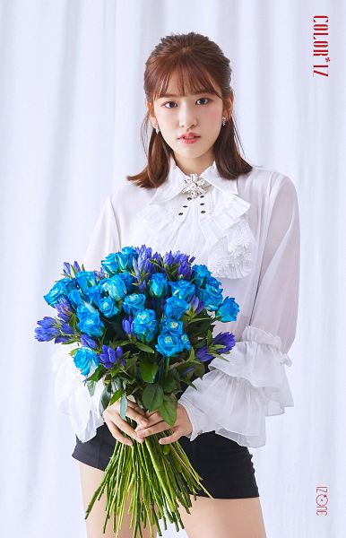 Tags: K-Pop, IZ*ONE, Ahn Yujin, Black Shorts, Blue Flower, Rose (flower), Purple Flower, Bouquet, Shorts, Serious, Flower