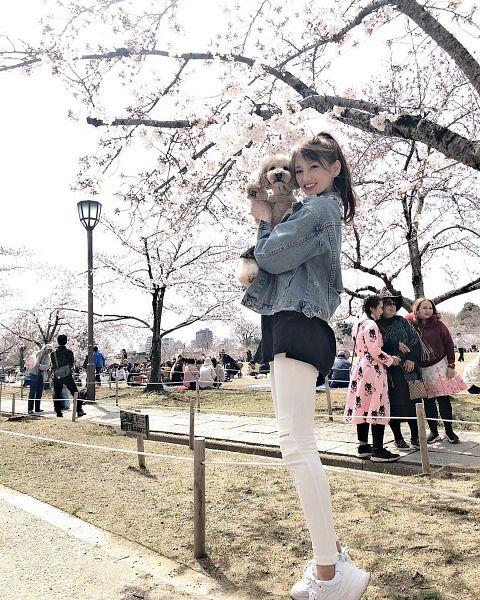 Tags: J-Pop, Anera Tsujikado, Outdoors, Medium Hair, Looking Down, Pink Flower, Denim Jacket, Shoes, Cherry Blossom, Sneakers, White Footwear, Dog