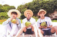 BTS 2018 Summer Package