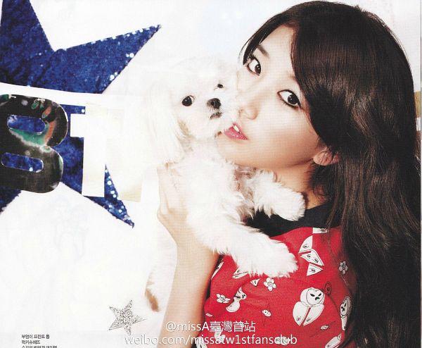 Tags: K-Pop, Miss A, Bae Suzy, Red Shirt, Dog, Black Eyes, Animal, Magazine Scan, CeCi