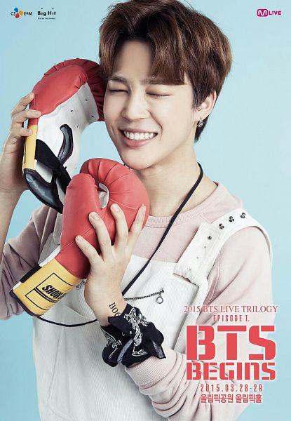 Boxing Gloves - Gloves