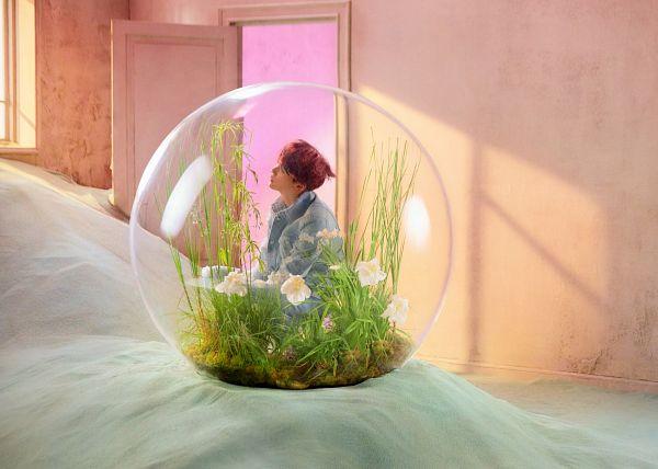 Bubbles - Transparency