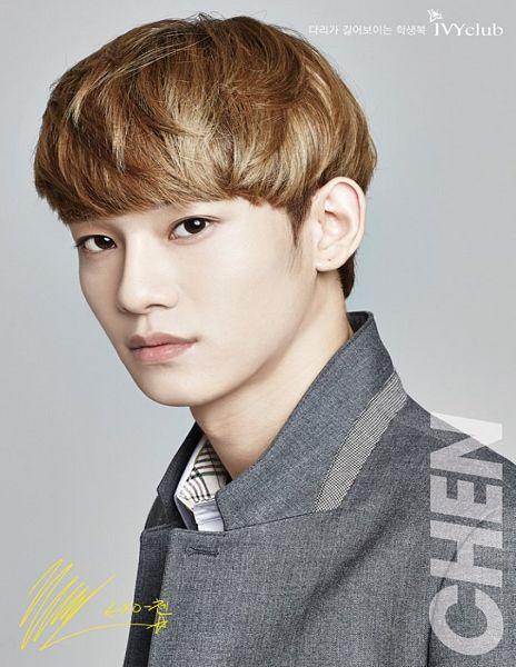 Tags: K-Pop, EXO, Chen, Gray Jacket, Korean Text, Gray Background, Gray Outerwear, Text: Artist Name
