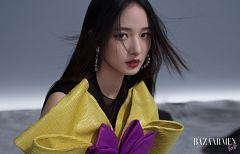 Chen Hsin Wei