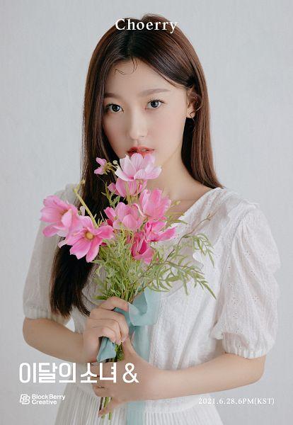 Tags: K-Pop, LOOΠΔ, Choerry, Pink Flower, Flower, & (LOOΠΔ)