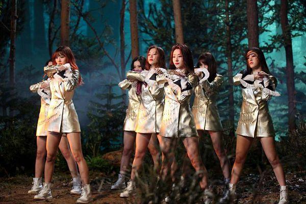 Tags: K-Pop, Dreamcatcher, Lee Siyeon, Sua, Jiu, Lee Gahyeon, Dami (Dreamcatcher), Handong, Kim Yoohyeon, Full Group, Forest, Tree