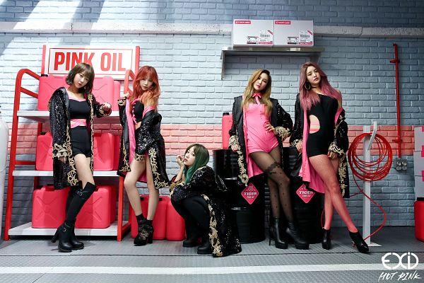 Tags: K-Pop, EXID, Hot Pink, Park Junghwa, Hani, Seo Hyerin, Heo Solji, Le, Wallpaper