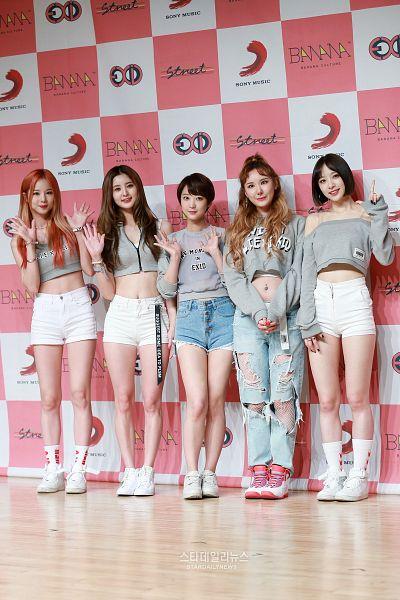 Tags: K-Pop, EXID, Heo Solji, Le, Hani, Park Junghwa, Seo Hyerin, stardailynews, Android/iPhone Wallpaper