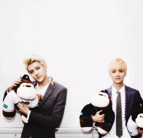 Tags: K-Pop, EXO, Luhan, Sehun, Duo, Stuffed Toy, Stuffed Animal, Black Jacket, Black Neckwear, Light Background, Tie, Two Males