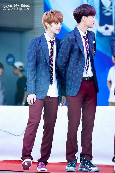 Tags: K-Pop, EXO, Kai, Luhan, Striped Neckwear, Pink Footwear, Tie, Checkered, Brown Pants, Sneakers, Checkered Jacket, Gray Jacket
