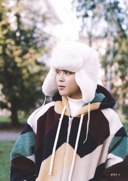 Fur Hat - Hat