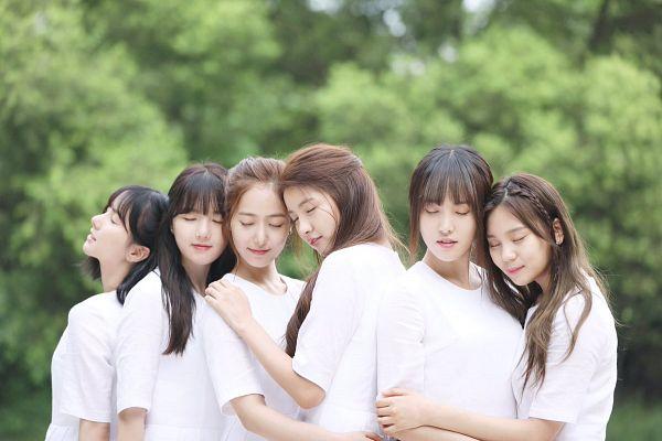 Tags: K-Pop, G-friend, Jung Yerin, SinB, Eunha, Umji, Yuju, Sowon, Holding Close, Text: Song Title, Text: Artist Name, Tree