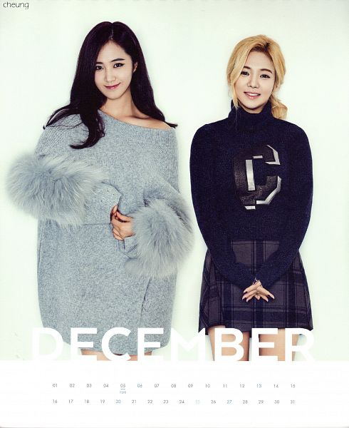 Tags: K-Pop, Girls' Generation, Kwon Yuri, Kim Hyo-yeon, Gray Dress, Black Skirt, Two Girls, Duo, Girls' Generation 2015 Season'S Greetings, Calendar