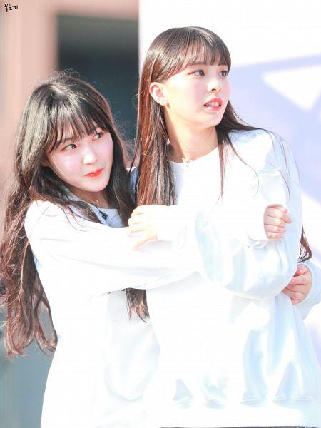 Tags: J-Pop, K-Pop, Kawaguchi Yurina, Kim Chaehyun (Kep1er), Girls Planet 999