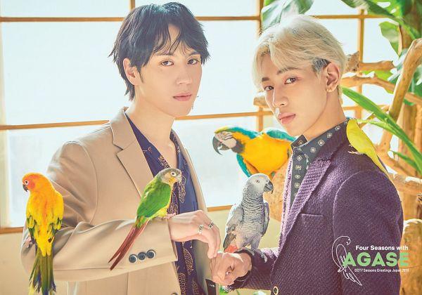 Tags: K-Pop, Got7, Kim Yugyeom, BamBam, Serious, Duo, Purple Jacket, Animal, Purple Outerwear, Brown Outerwear, Ring, Bird