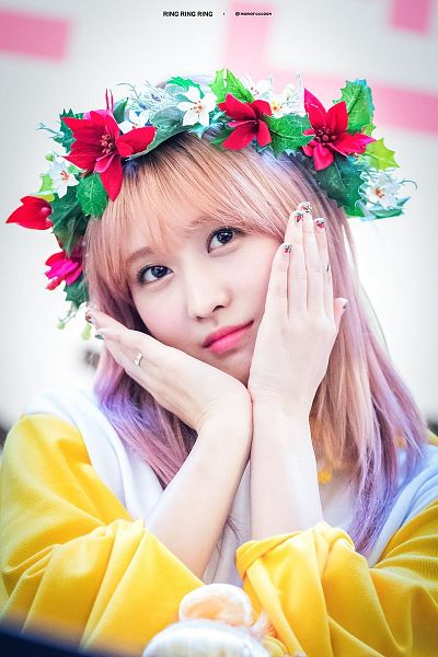 Tags: K-Pop, Twice, Hirai Momo, Crown, Hair Ornament, Flower, Flower Crown, Fansigning Event