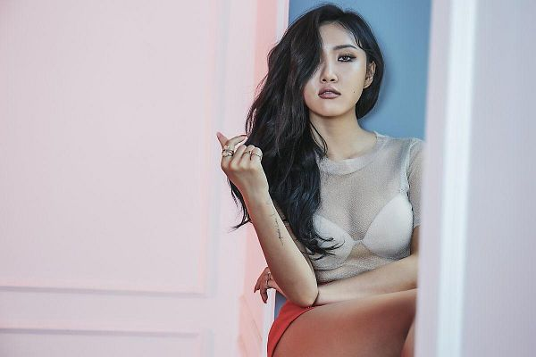 Tags: K-Pop, Mamamoo, Hwasa, See Through Clothes, Pink Background, Lingerie, Tattoo, Bra, Orange Shorts, Crossed Arms, Bare Legs, Ring