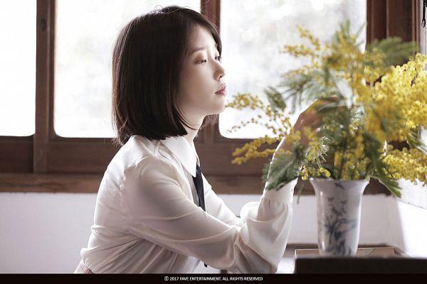 Tags: K-Pop, Through the Night, IU, Table, Window, Short Hair, Yellow Flower, Flower, Palette