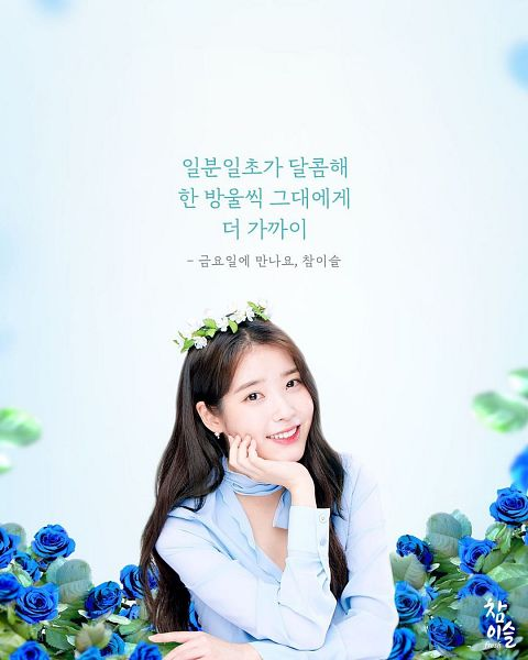 Tags: K-Pop, IU, Korean Text, Blue Shirt, Blue Flower, Flower Crown, Hair Ornament, Rose (flower), Hand On Cheek, Crown, Hand On Head, Blue Background