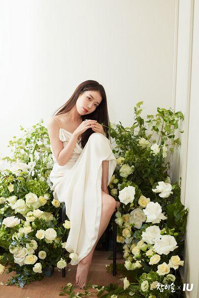 Tags: K-Pop, IU, Head Tilt, White Dress, Chair, Flower, White Outfit, White Flower, Barefoot, Chamisul