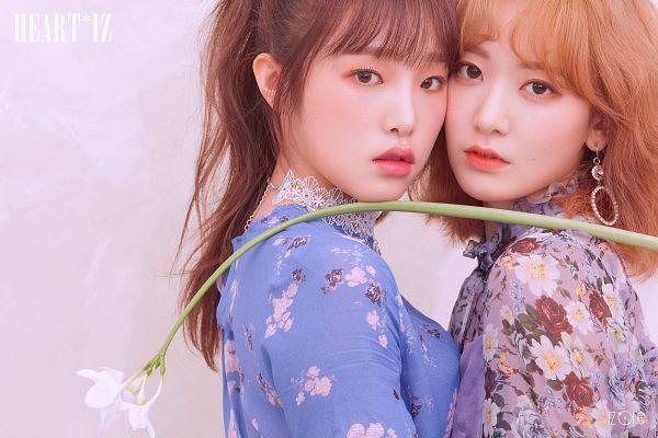 Tags: J-Pop, K-Pop, IZ*ONE, HKT48, Choi Yena, Miyawaki Sakura, Red Hair, White Flower, Flower, Text: Album Name, Duo, Serious