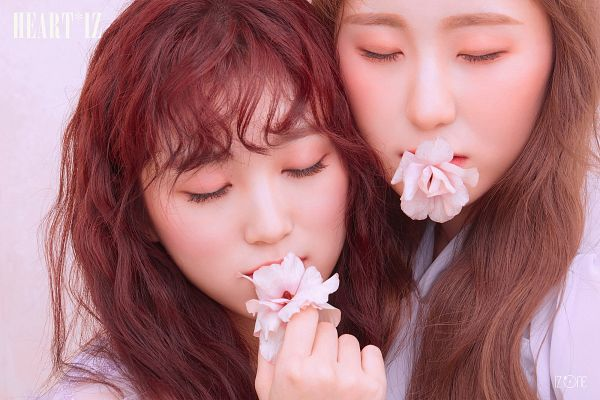 Tags: J-Pop, K-Pop, IZ*ONE, HKT48, Yabuki Nako, Lee Chaeyeon, Flower, Text: Album Name, Two Girls, Eyes Closed, Red Hair, Duo