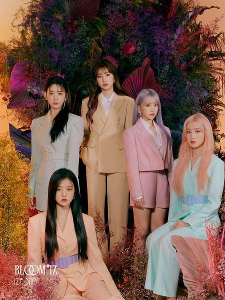 Tags: J-Pop, K-Pop, AKB48, HKT48, IZ*ONE, Jang Wonyoung, Kang Hyewon, Yabuki Nako, Miyawaki Sakura, Hitomi Honda, Text: Artist Name, Quintet