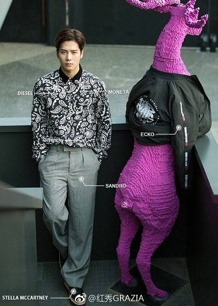 Tags: K-Pop, Got7, Jackson, Full Body, Animal, Hand In Pocket, Serious, Jacket, Chinese Text, Black Jacket, Gray Pants, Text