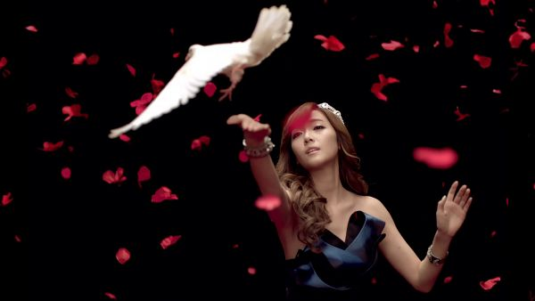 Tags: K-Pop, Girls' Generation, Jessica Jung, Bird, Animal, Bare Shoulders, Black Background, Dark Background, Sleeveless, Petals, HD Wallpaper, 1920x1080 Wallpaper