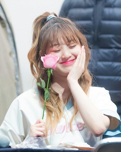 Tags: JYP Entertainment, K-Pop, Twice, Jihyo, Eyes Closed, Flower, Fansigning Event
