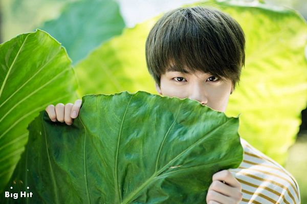 Tags: K-Pop, BTS, Jin, Black Eyes, Leaf, Plant, Striped, Striped Shirt, BTS 2015 Summer Package