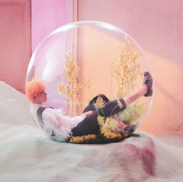 Tags: K-Pop, BTS, Jin, Flower, Indoors, Side View, Plant, Vest, Laying On Back, Laying Down, Bubbles, Grass