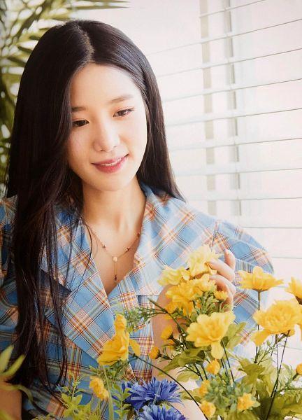 Tags: K-Pop, Berry Good, Johyun, Yellow Flower, Plaided Shirt, Necklace, Black Eyes, Flower, Blue Flower, Window, Plaided Print, Blue Shirt