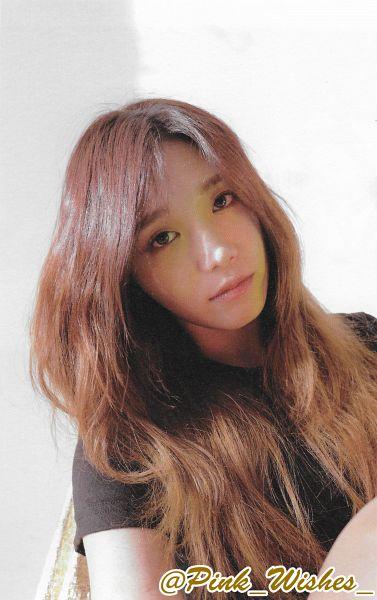 Tags: K-Pop, Apink, Jung Eun-ji, Black Eyes, Serious, Wavy Hair, Short Sleeves, Dear, Android/iPhone Wallpaper