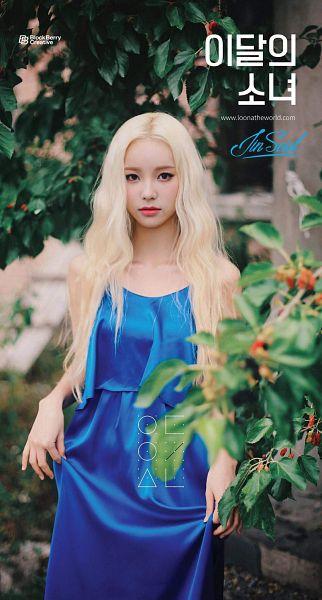 Tags: K-Pop, LOOΠΔ, Singing in the Rain, Jung Jinsoul, Sleeveless, Serious, Blue Outfit, Flower, Plant, Black Eyes, Orange Flower, Sleeveless Dress