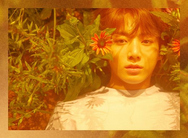 Tags: K-Pop, BTS, Jungkook, Laying On Ground, Close Up, Frame, Laying Down, Leaf, Flower, Laying On Back, Love Yourself: Her, Twitter