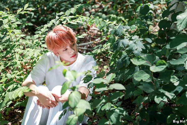 Tags: K-Pop, BTS, Jungkook, Text: Company Name, White Pants, Pink Hair, Sitting On Ground, Tree, English Text, Plant, Short Sleeves, Outdoors