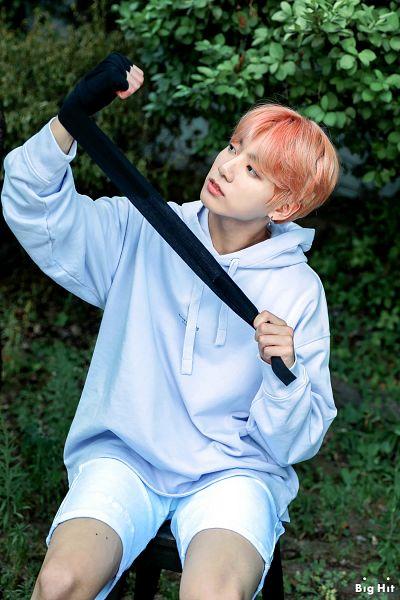 Tags: K-Pop, BTS, Jungkook, Hood, Bush, Hoodie, Text: Company Name, Blue Shirt, English Text, Plant, Shorts, White Shorts