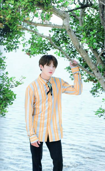 Tags: K-Pop, BTS, Jungkook, Striped, Striped Shirt, Black Pants, Serious, Tree, Plant, Water, BTS 2017 Summer Package