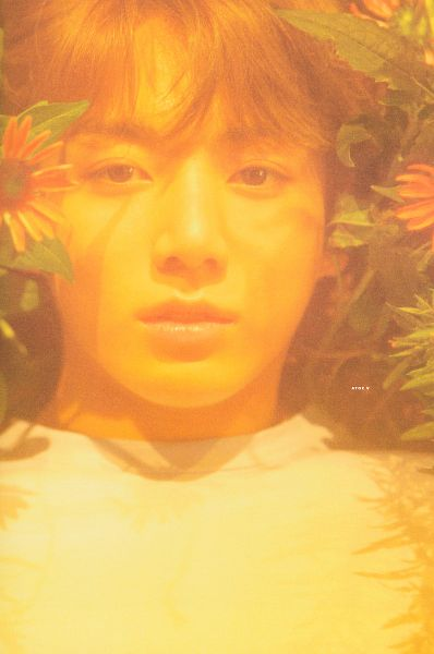 Tags: K-Pop, BTS, Jungkook, Laying Down, Orange Flower, Flower, Leaf, Laying On Back, Outdoors, Laying On Ground, Close Up, Love Yourself: Her