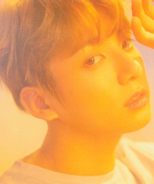 Tags: K-Pop, BTS, Jungkook, Indoors, Light Background, Love Yourself: Her, Scan