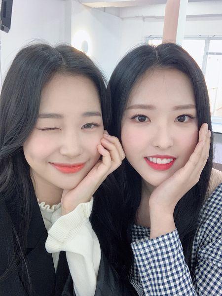 Tags: K-Pop, Weeekly, LOOΠΔ, Olivia Hye, Jihan