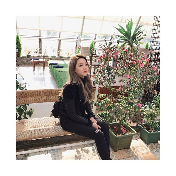 Tags: K-Pop, Berry Good, Kang Sehyung, Pink Flower, Black Outerwear, Plant, Black Pants, Black Jacket, Flower
