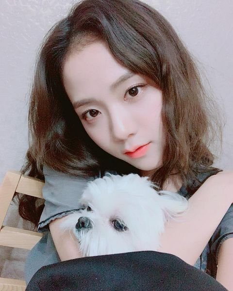 Tags: K-Pop, Black Pink, Kim Jisoo, Animal, Wavy Hair, Looking Ahead, Chair, Dog, Instagram, Selca