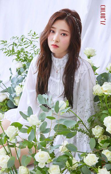 Tags: K-Pop, IZ*ONE, Kim Minju, Blush (Make Up), White Flower, Serious, Flower, Make Up, Rose (flower)