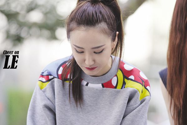 Tags: K-Pop, EXID, Le, Hair Up, Ponytail, Looking Down, Wallpaper