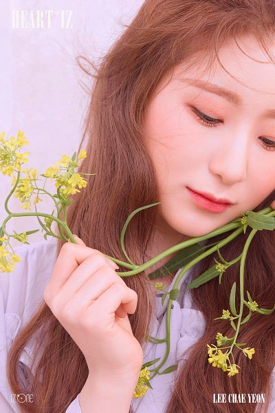 Tags: K-Pop, IZ*ONE, Lee Chaeyeon, Pink Background, Looking Down, Flower, Yellow Flower, Text: Artist Name, Make Up, Text: Album Name, Blush (Make Up)
