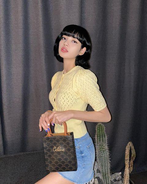 Tags: K-Pop, Black Pink, Lisa, Medium Hair, Denim Skirt, Yellow Shirt, Skirt, Plant, Gray Background, Bare Legs, Make Up, Cactus