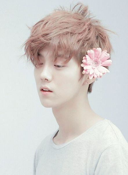 Tags: K-Pop, EXO, Luhan, Flower, Hair Ornament, Eyes Half Closed, Looking Down, Gray Background, Hair Flower, Pink Flower